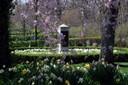 Scattering Garden in David's Cemetery - Kettering